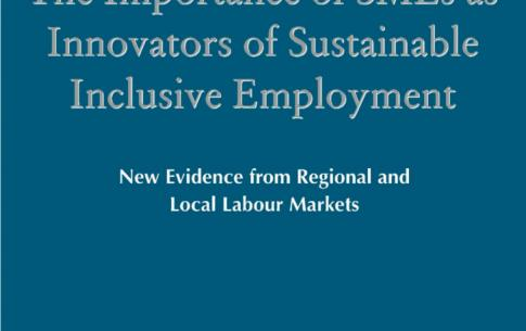 Martine Gadille, Karine Guiderdoni-Jourdain & Robert Tchobanian dans The Importance of SMEs as Innovators of Sustainable Inclusive Employment